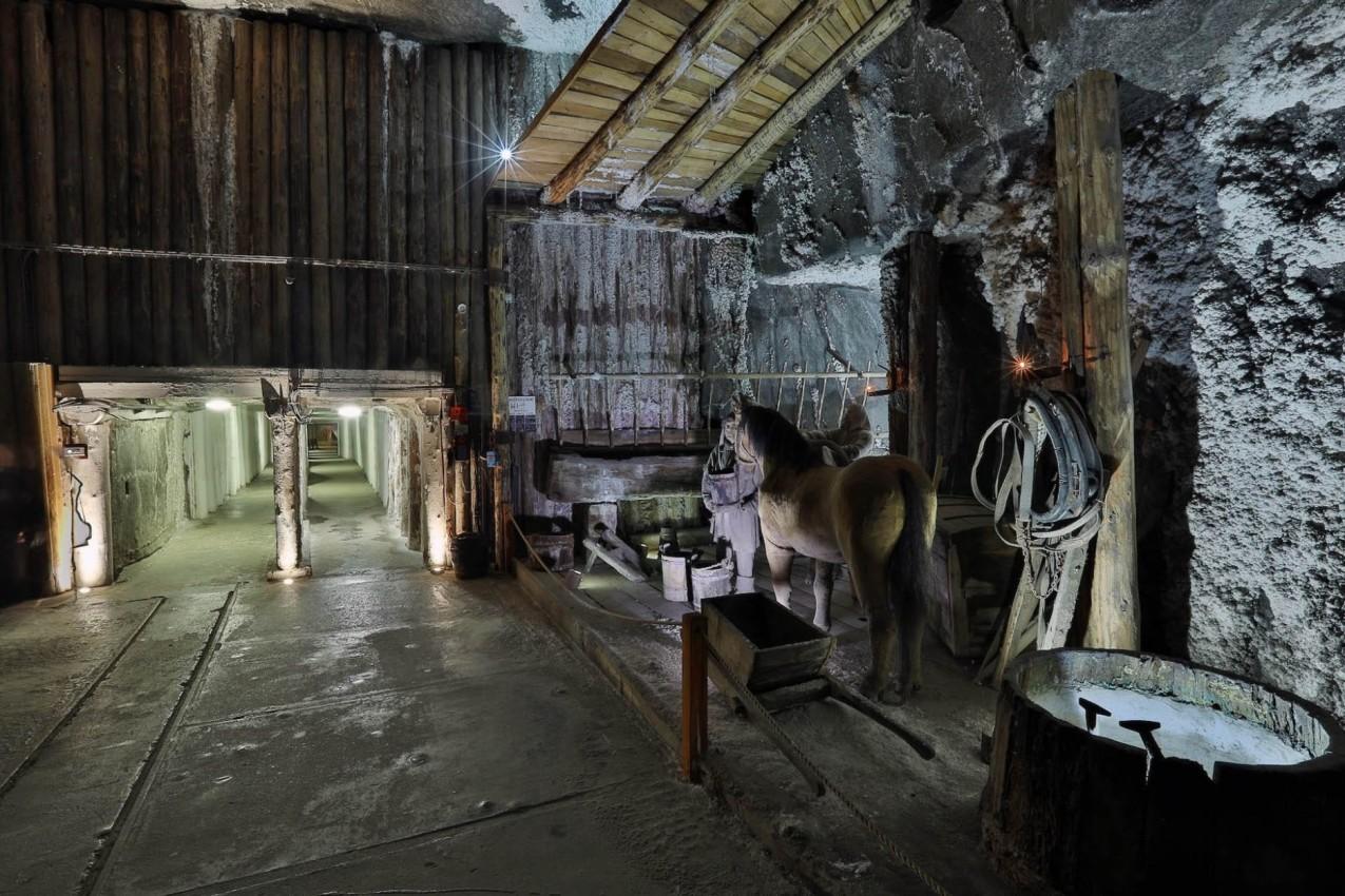 Εργαλεία εξόρυξης και άλογα στο αλατορυχείο Βιελίτσκα